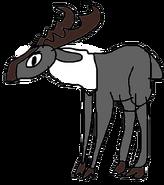 Reindeer (CO3000)