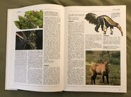 The Kingfisher Illustrated Encyclopedia of Animals (6)