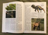 The Kingfisher Illustrated Encyclopedia of Animals (6)