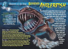 Bearded Anglerfish