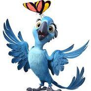 Bia spix macaw