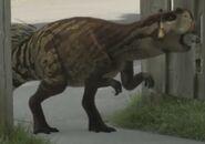 Dino Dan Psittacosaurus