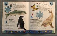 Polar Animals Dictionary (5)