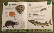 Deadly Creatures Dictionary (14)
