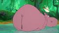 El Arca Hippo