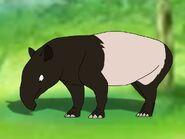 Rileys Adventures Malayan Tapir
