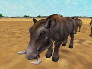 Zt2-warthog