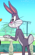 Bugs thinking about dates 1