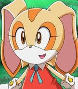 Cream the Rabbit in Sonic X