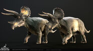 Male and female triceratops