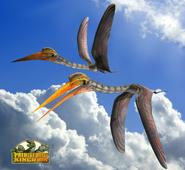 Quetzalcoatlus 2014