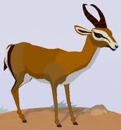 Springbok WOZ
