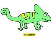 Emmett's ABC Book Chameleon