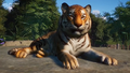 Planet Zoo Bengal Tiger