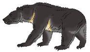 Skull island bestiary island cave bear by pristichampsus d99vlwf
