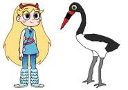 Star meets Saddle-Billed Stork