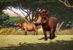 Common-warthog-planet-zoo
