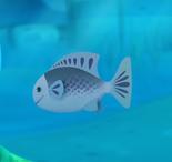 Grey Angelfish octonauts