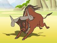 Rileys Adventures Black Wildebeest