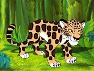 Rileys Adventures Paraguay Jaguar
