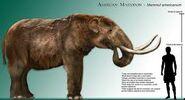 The Fall of the Mastodon