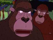 Wild thornberrys gorillas