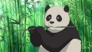 JEL Panda