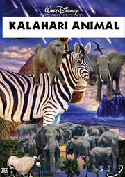KLHRIA Poster.png