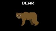 KPS Bear