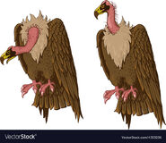 Noah's Ark Vultures Ducks Woodpeckers Teals Hawks Gulls Jays Titmouses Owls Robins Herons Grebes Hummingbirds Veerys Terns Warblers Grosbeaks Gooses Eagles Bullfinchs