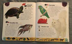 Pet Dictionary (18).jpeg
