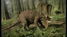 Chasmosaurus 1.png