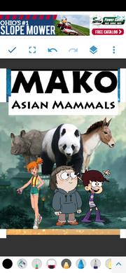 MKASNMMMLS Poster.png