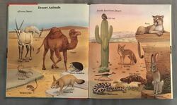 My First Book of Animals from A to Z (6).jpeg