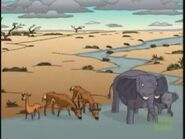 TWT 1998 TV Series Elephants and Antelopes