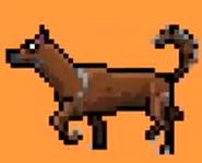TWT 2001 Video Game Dingo