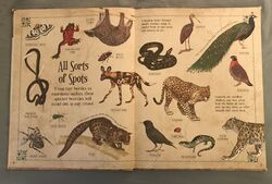 A Curious Collection Of Animals Animals (2).jpeg