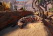 Gila-monster-planet-zoo