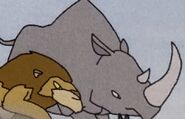 Lion and Rhinoceros in volume13 rileysadventures