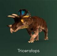 PK Triceratops