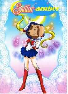 Sailor-Amber.jpg