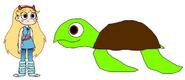 Star meets Hawksbill Sea Turtle
