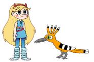 Star meets Hoopoe