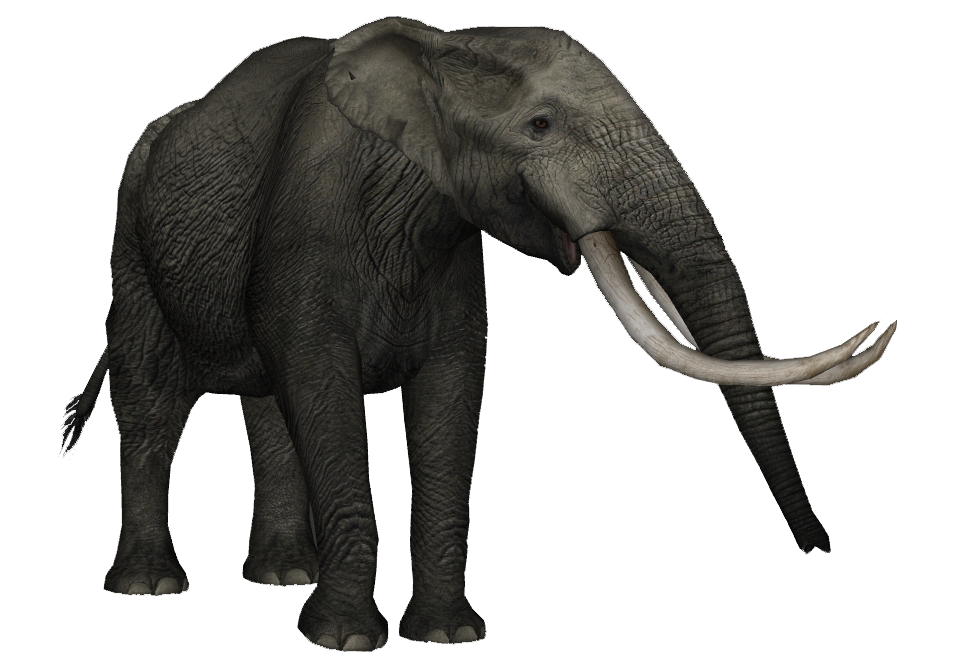 Sinomastodon