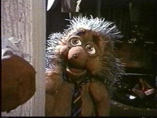 Robert the Hedgehog