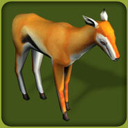 Thomson Gazelle (Blue Fang)