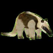 Zoo Tyoon Tamandua Model