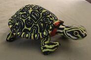 Gleek the Red-Bellied Turtle