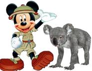 Mickey meets koala