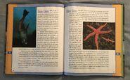Scholastic Encyclopedia Of Animals (46)